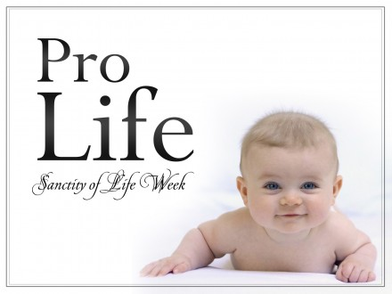 http://www.aohflorida.org/marybeth/wp-content/uploads/2013/06/Pro-Life.jpg